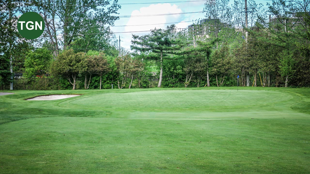 Lakeview Hole 8 Green
