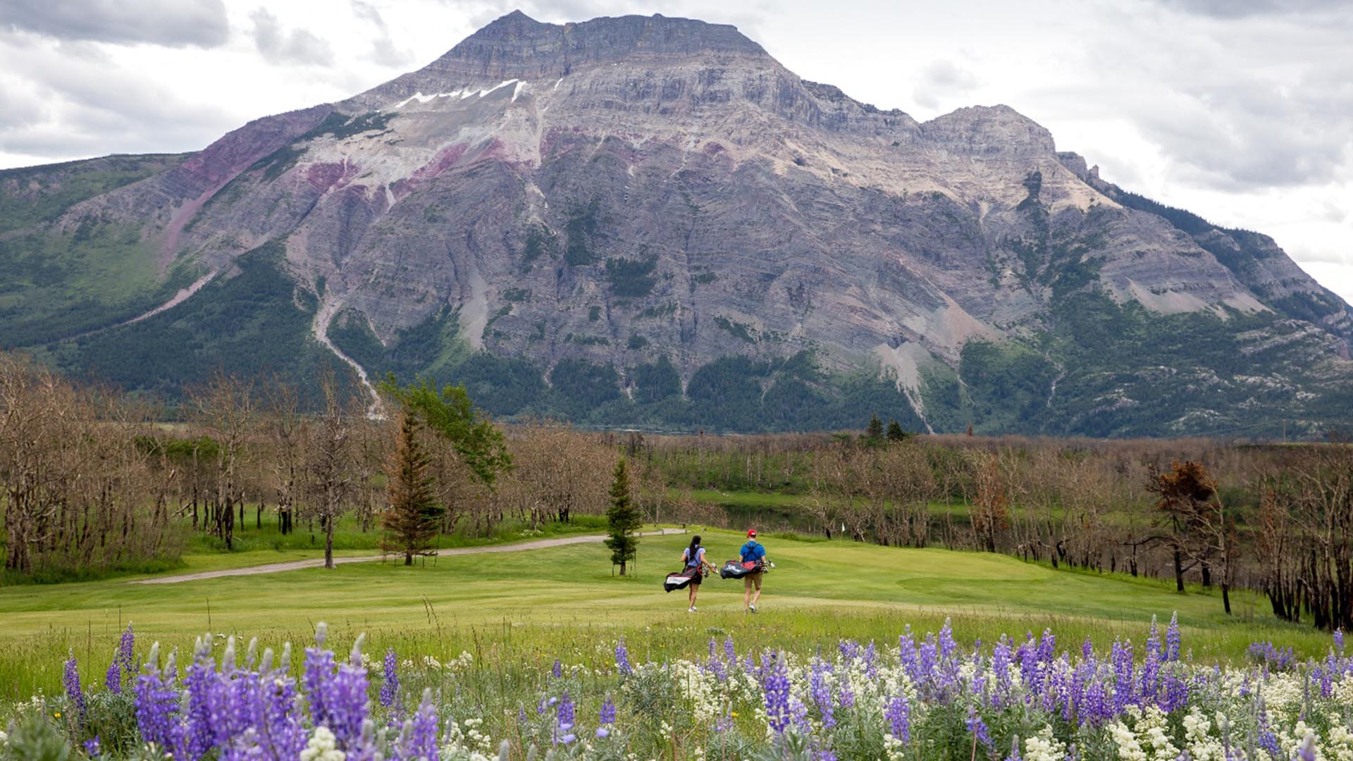 LOBB + PARTNERS Hired To Revitalize Waterton Lakes
